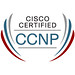 Official CCNP Logo