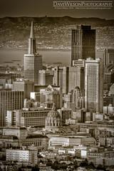 San Francisco Landmarks