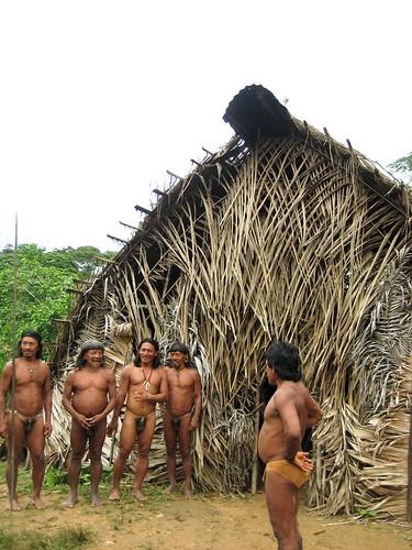 latinamerica southamerica landscape ecuador amazon unique jungle tribes oriente sudamerica huaorani waorani penti huao