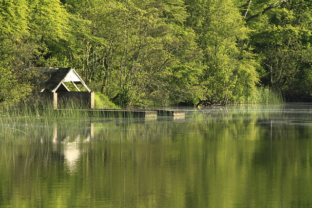 Boathouse reflections