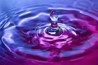 Flickr Splash