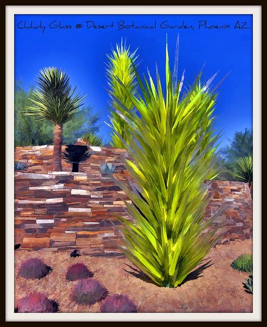 Desert Botanical Garden Phoenix Az Flickr Photo Sharing
