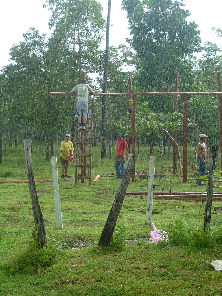 Panthera's team working on the livestock enclosure in a little rain shower.   Read 'Panthera's Guide to Building a Livestock Corral' from our October 2010 newsletter at www.panthera.org/november-2010-newsletter.  Learn more about the work Panthera's Costa Rica team is doing at pantheracostarica.org/.   Also read about our jaguar conservation work in other countries through our Jaguar Corridor Initiative - www.panthera.org/programs/jaguar/jaguar-corridor-initiative - and Pantanal Jaguar Project - www.panthera.org/programs/jaguar/pantanal-jaguar-project.    © Josephine Dusapin