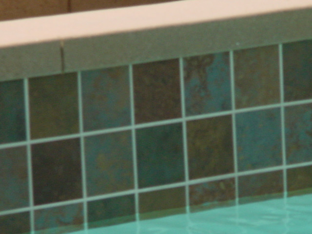 Swimming Pool Tile Design | Swimming pool tile grout can eit ...