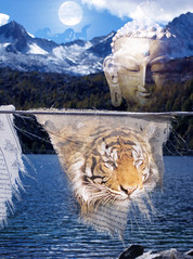 Happy New Year, February 14th, 2010, Year of the Tiger, Buddha, Wind Horse, Prayer Flags, Tibet