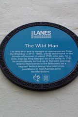 Photo of The Wild Man, Norwich and Peter the Wild Boy blue plaque