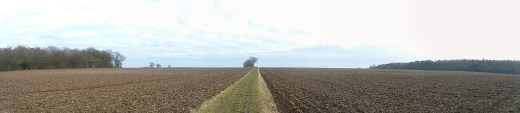Bridleway across fields Welwyn Circular