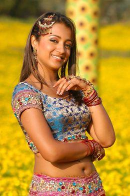 Sexy Desi Masala Actress
