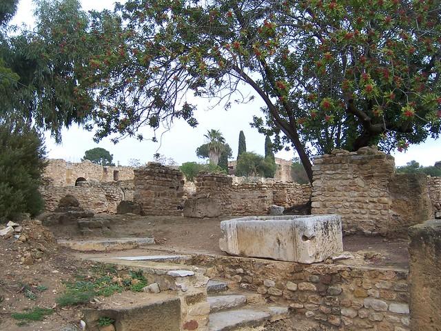 Carthage / Roman Villas