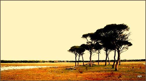 Tierra infinita by Garbándaras