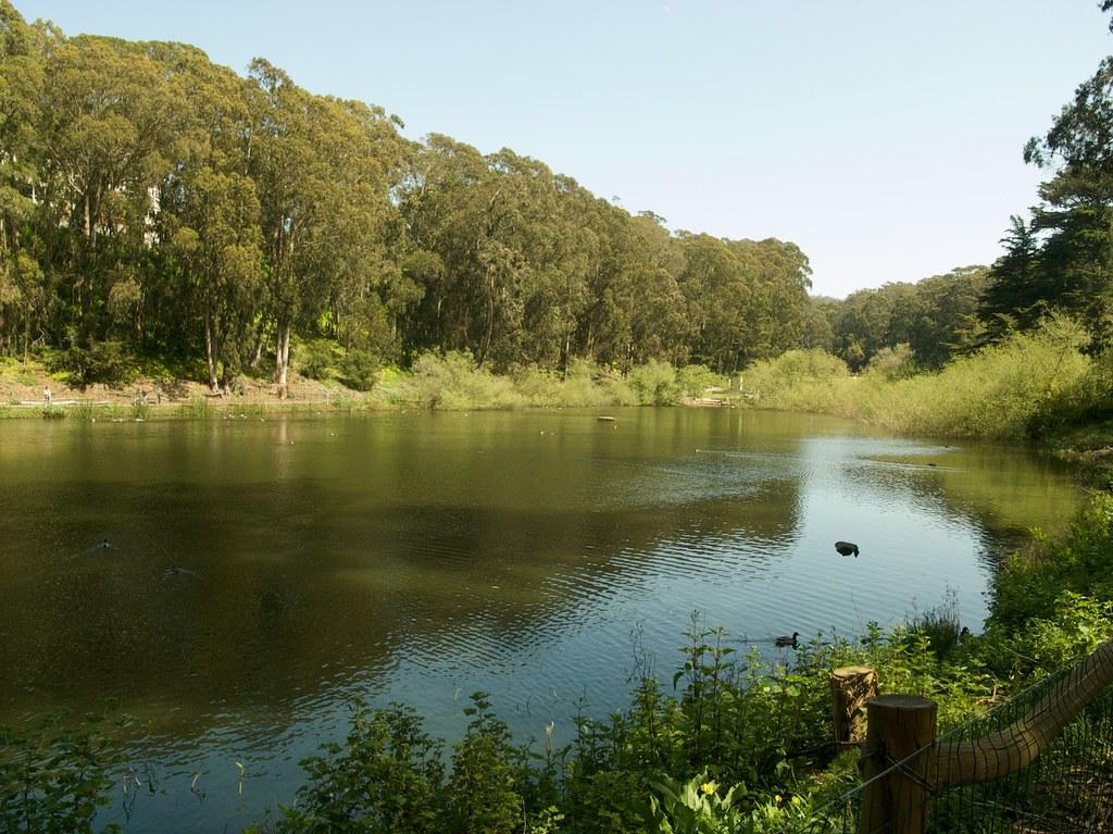 Laguna Lake Dog Park San Luis Obispo
