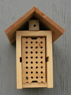 A bee hotel nest box