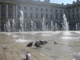 Somerset House fountains and pigeons