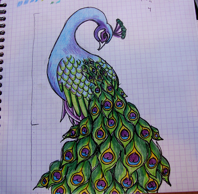 Peacock Drawing Step By Step