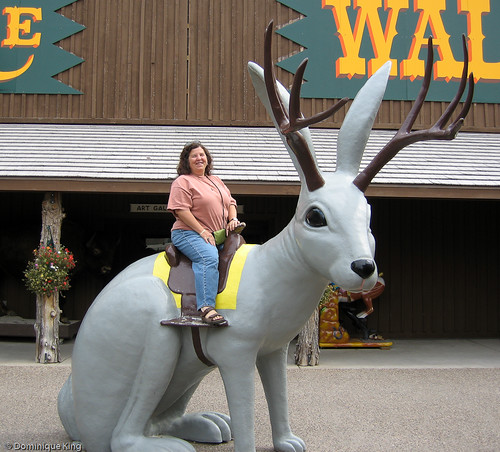 Wall Drug, South Dakota-3