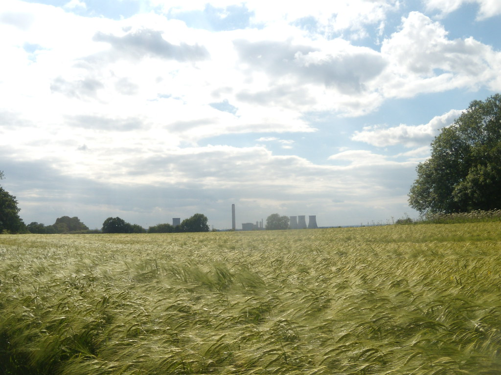 Didcot Power Station from barleyfield A constant presence on this walk, Appleford Circular