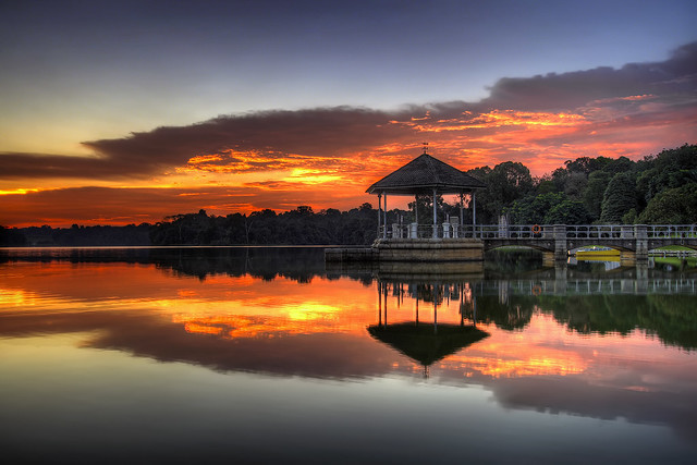 Sunset at Lower Peirce Reservoir in Singapore - HDR