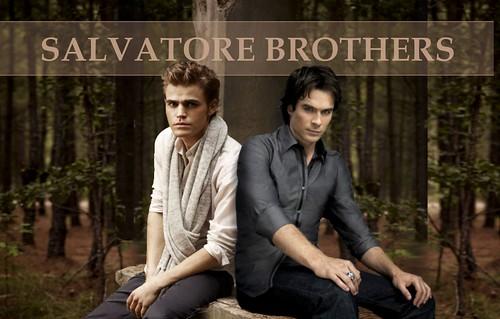 "Vampire Diaries ""Salvatore Brothers"" Wallpaper"