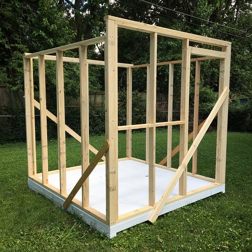 Shed frame is up.