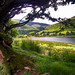 Tal y llyn Lake - the other end! ... by margaretpugnet