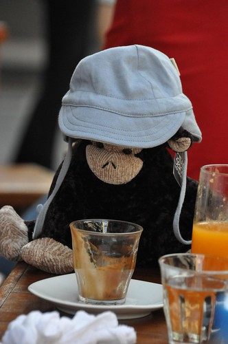 Monkeying Around at Sydney Cafe