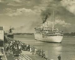 Cruise ship Strathaird leaving Port Hamilton, Brisbane