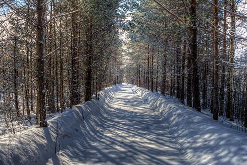 Winter road, Finland