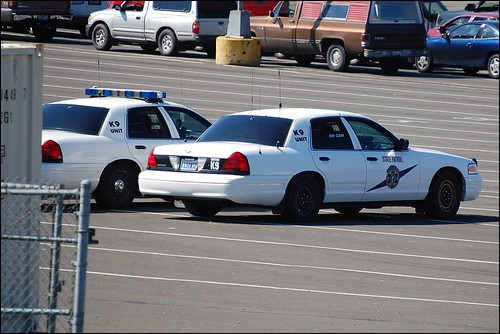ford police ferryterminal k9 statepolice lewa wsp kitsapcounty crownvic 2000views washingtonstatepatrol kingstonwa nikond40 spring2010 1134wsp