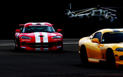 Vipers at the Dad's Day Out (2)