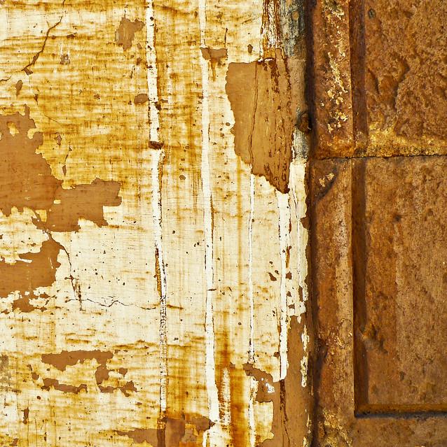 Mexican Wall (square XVI)