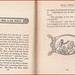 Small photo of Aesop's Fables - The Devil