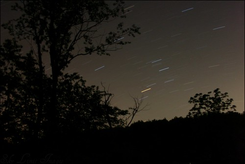 longexposure trees sky night canon woods pennsylvania startrails sooc skylimitimages