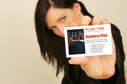 Plan-Too business plan
