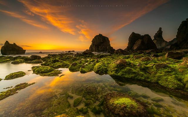 Ocean grass   [ explore 07|07|2017 ], Canon EOS 5D MARK III, Canon EF 14mm f/2.8L II USM