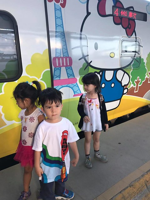 林佳蓉母子坐往花蓮火車 (6)