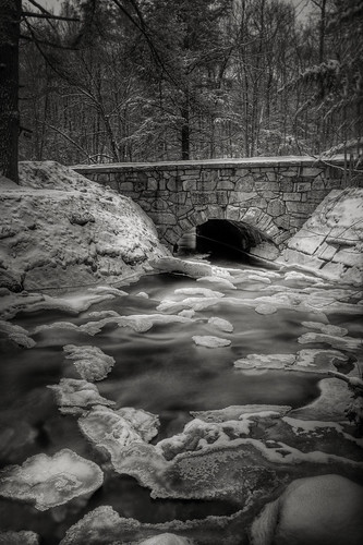 winter blackandwhite snow cold water massachusetts willardbrookstateforest