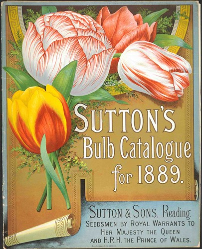 Suttons1889-cover