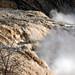 Roaring Cohoes Falls