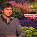 Small photo of Ashton Kutcher Talks About Valentine's Day