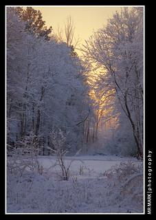 Vickery Creek Meadow, Forsyth County, GA