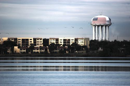 seagulls birds florida watertower americanflag cocoa merrittisland indianriver sigmaef70300mmf4