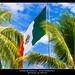 Bandera de México por Hagens_world