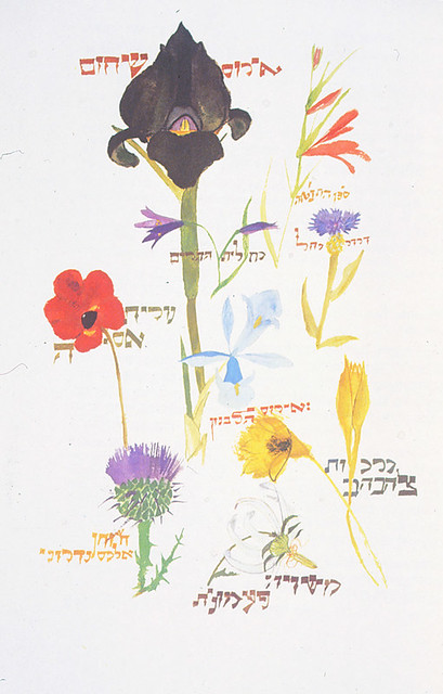 Passover Haggadah [94-53-2a-b], A Passover Haggadah, Leonard Baskin, 1974