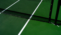 chain-link fencing(0.0), soccer-specific stadium(0.0), baseball field(0.0), player(0.0), flooring(0.0), stadium(0.0), ball(0.0), sport venue(1.0), grass(1.0), tennis court(1.0), line(1.0), green(1.0), net(1.0), goal(1.0),