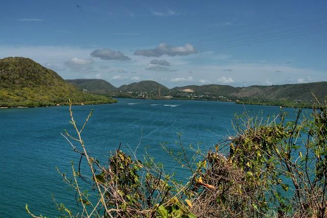 Bosque Seco, Guánica
