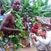 Pygmy Village - Congo