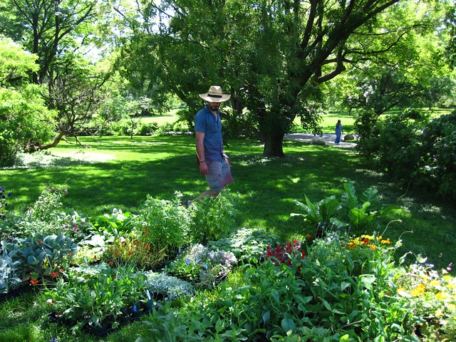 Curator Cayleb Long surveys part of the bounty that will be planted in the Annual Border display honoring BBG's centennial.