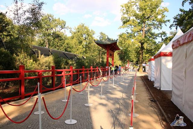 Panda Meng Meng und Jiao Qing im Berliner Zoo 090