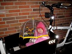 Lulu Bicycle Brolley 2 - Cycling in Winter in Copenhagen