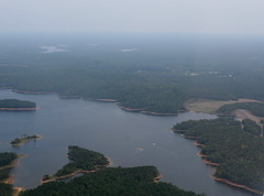 Forests Surrounding Lake Jordan, North Carolina